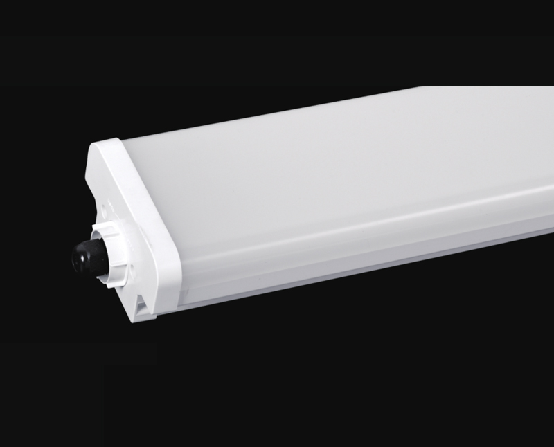 TOPH LED Series Double Lamp